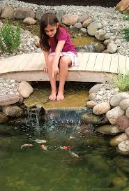 1089 Best Water Garden Images On Pinterest | Water Garden, Garden ... 67 Cool Backyard Pond Design Ideas Digs Outdoor With Small House And Planning Ergonomic Waterfall Home Garden Landscaping Around A Pond Flow Back To The Ponds And Waterfalls Call For Free Estimate Of Our Back Yard Koi Designs Febbceede Amys Office Large Backyard Ponds Natural Large Wood Dresser No Experience Necessary 9 Steps Tips To Caring The Idea Pinterest Garden Design