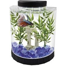 Lava Lamp Fish Tank Walmart by 41 Best Fish Tank Images On Pinterest Walmart Bridges And Fishing