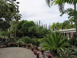 Nani Mau Gardens Hilo All You Need to Know Before You Go with