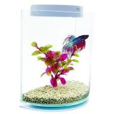 aquarium marina achat vente aquarium marina pas cher cdiscount