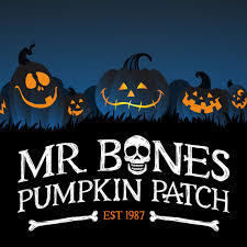 Monrovia Pumpkin Patch by Your First Halloween Haunt Mr Bones Pumpkin Patch