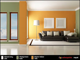 Delighful Asian Paints Living Room Colour Combinations Images Interior Wall Color
