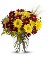 Fall For Daisies From Brennans Florist And Fine Gifts In Jersey City