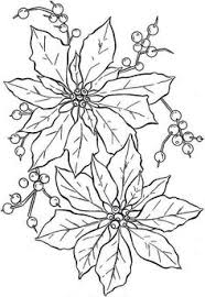 Poinsettia Flower Beautiful Coloring Page