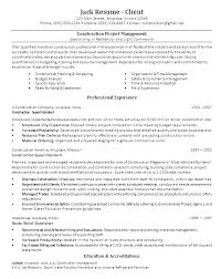 Junior Project Manager Resume Best Good Word Technical Entry Level