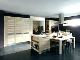 lapeyre cuisine porte de cuisine lapeyre changer facade meuble cuisine portes