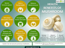Pumpkin Seeds Prostate Pubmed by 11 Interesting Mushroom Benefits Organic Facts