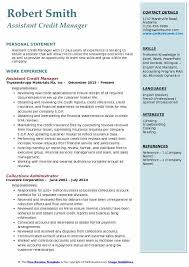 Assistant Credit Manager Resume Sample