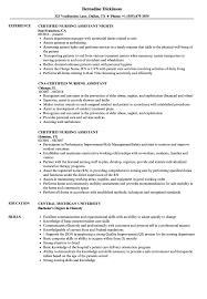 Download Certified Nursing Assistant Resume Sample As Image File