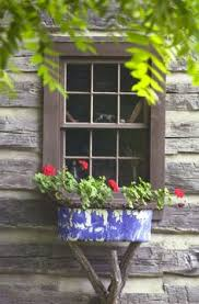 Love This Rustic Window Box On A Tree Trunk With Branches