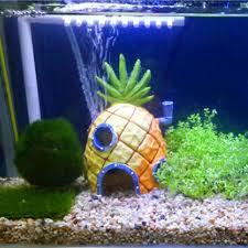 Spongebob Aquarium Decor Set 3 patterns cute pineapple aquatic animals house home fish tank
