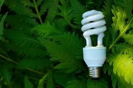 green 盪 how do energy saving light bulbs work