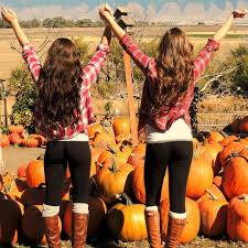 Pumpkin Patch Near Chandler Az by Best 25 Pumpkin Patch Photography Ideas On Pinterest Pumpkin