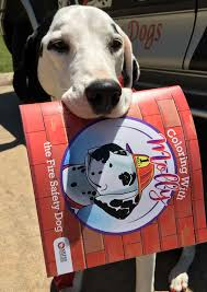 The Keep Kids Fire Safe Foundation And I Are Happy To Announce My New Molly Safety Dog Coloring Book In ENGLISH AND SPANISH
