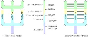evolution of modern humans early modern sapiens