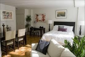 100 Small One Bedroom Apartments Exciting Apartment Decorating Ideas Studio Apt