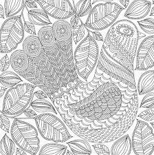 Blooms Birds Butterflies Artists Coloring Book