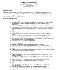 Ceo Sample Resume Pleasing Board Of Directors Position About A Professional Template For An Samples