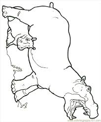 Mural Hhl Hippo With Baby Reversed Coloring Page