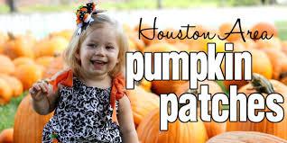 Kohala Pumpkin Patch 2014 by Kohala Pumpkin Patch 2015 Houston