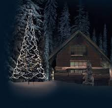 Flagpole Christmas Tree Uk by 100 Flagpole Christmas Tree Star Patent Us8678615 Light
