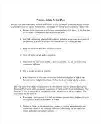 Personal Action Plan Examples Safety