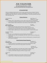 Sales Executive Resume New Elegant Languages Resume Fresh ... Senior Sales Executive Resume Samples And Templates Visualcv Package Services Template 31 Free Wordpdf Indesign Ideal Advertising Inside Tips Tipss Und Vorlagen Account Writing Companion Top 8 Inside Sales Executive Resume Samples New Elegant Languages Fresh Sample Print Cv Collection Examples For And Real Examlpes