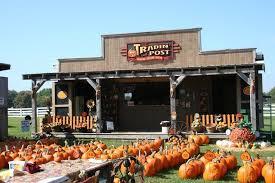 Big Orange Pumpkin Patch Celina Texas by Big Orange Pumpkin Farm In Celina Texas Pumpkin Farm Texas And