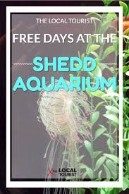 Jazzin At The Shedd Groupon by Big Discount U0027s For Home Sellers The Biggest News Pinterest