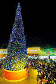 Real Christmas Trees Kmart by 606 Best Celebrate Christmas Images On Pinterest Christmas Carol
