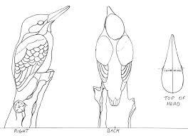 kingfisher wood carving magazine woodworkersinstitute com