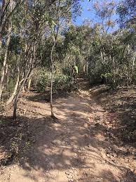 100 Lerderderg State Park Gorge And Spur Track Victoria Australia AllTrails