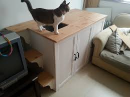 Cat Litter Carpet by I Needed A Cat Litter Cabinet That Would Force My Cat To Have To