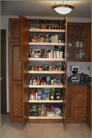 Corner Pantry Cabinet Dimensions by Furniture Brown Freestanding Pantry With Ceiling Lights And