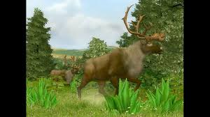 Cabela s Big Game Hunter 2008 News and Achievements