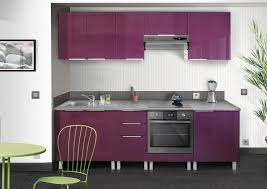 meuble cuisine berlenus cp8ha meuble haut de cuisine avec 2 portes aubergine