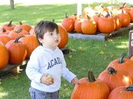 Pumpkin Picking Nj by Just Read September 2011