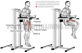 100 roman chair leg lifts at home great at home workout
