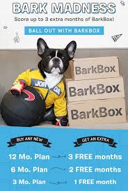 Get Up To 3 Months Of Barkbox FREE - Bark Madness Sale! | MSA Bark Box Coupons Arc Village Thrift Store Barkbox Ebarkshop Groupon 2014 Related Keywords Suggestions The Newly Leaked Secrets To Coupon Uncovered Barkbox That Touch Of Pit Shop Big Dees Tack Coupon Codes Coupons Mma Warehouse Barkbox Promo Codes Podcast 1 Online Sales For November 2019 Supersized 90s Throwback Electronic Dog Toy Bundle Cyber Monday Deal First Box For 5 Msa