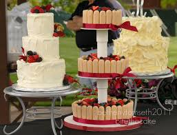 Rustic Wedding Cake Trio Charlotte Cheesecake Topped W Fresh Berries And Wrapped In Lady Fingers