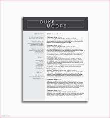 Executive Assistant Resume Examples 15 Beautiful Pics Of Administrative 2016 News