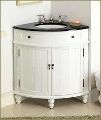 Corner Kitchen Sink Cabinet Ideas by Bathroom Lovable Country Kitchen Sink Ideas Cabinet For Corner