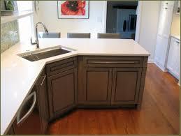 Blind Corner Kitchen Cabinet Ideas by Kitchen Furniture Extraordinary Kitchen Corner Cupboard Ideas