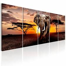 leinwand bilder afrika elefant tiere natur wandbilder