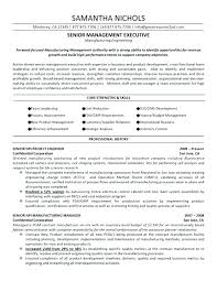 Project Manager Resume Examples Construction It Format In