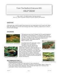 Umd Ece Help Desk by Umd It Help Desk 100 Images Information Technology Umd Of