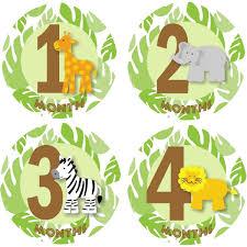 Zoo Animal Baby Shower Ideas