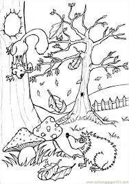 Squirrel And Hedgehog Coloring Page You Can Choose A Nice From FOREST ANIMALS Pages For Kids Enjoy Our Free