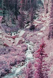 100 Rocky Landscape Small River Flowing Through A Surrounded By Purple