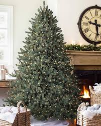 6 Ft Flocked Christmas Tree Uk by Blue Spruce Christmas Tree Balsam Hill